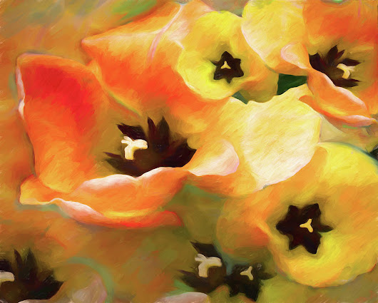 Tulip Sheen 3 by Lynda Lehmann