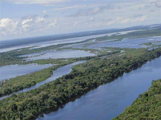 Vista aérea do arquipélago de Anavilhanas, no Rio Negro (Foto: Rede Globo)