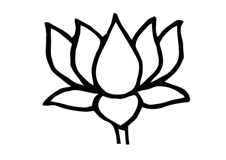 Lotus Flower Line Drawing Clipartsco