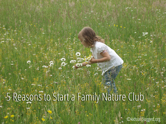 5 Reasons to Join (or Start!) a Family Nature Club | Kids Unplugged