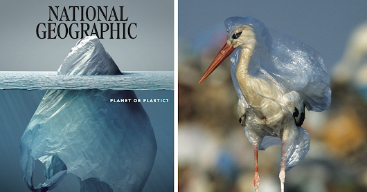 Everyone Is Applauding This National Geographic Cover But The Real Shock Lies Inside The Pages