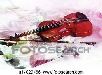 Banque de Photo - gros plan, violon,  fleurs. fotosearch  - recherchez des  photos, des images  et des cliparts