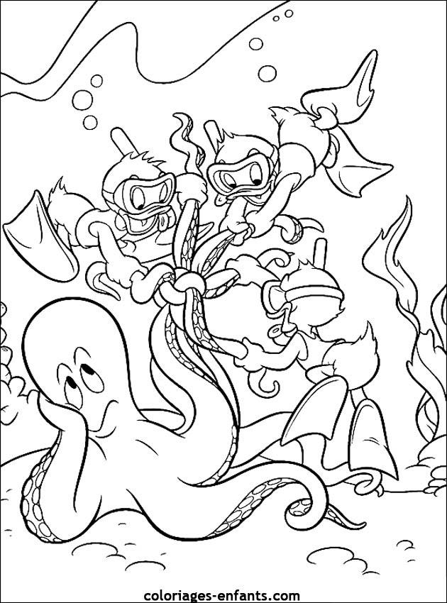 Les Coloriages De La Mer à Imprimer Sur Coloriages Enfantscom