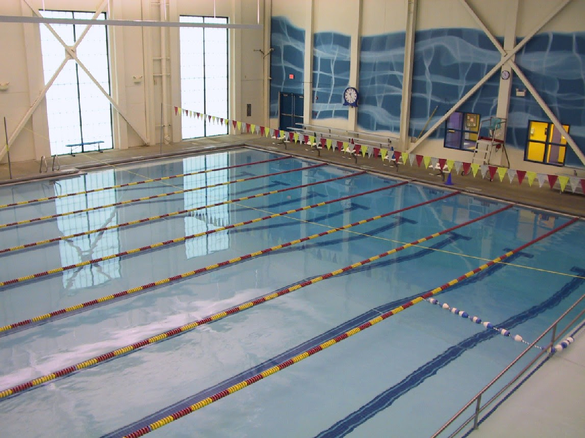 Lap Swimming Pool Dining Room Home Office