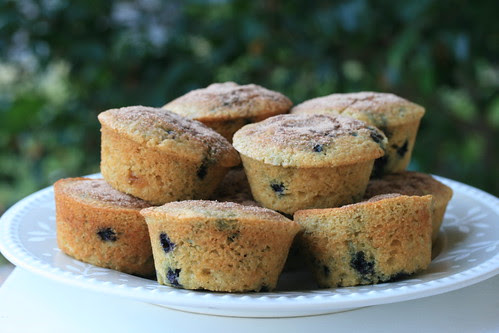 Blueberry Cornmeal Muffins - Williams Sonoma