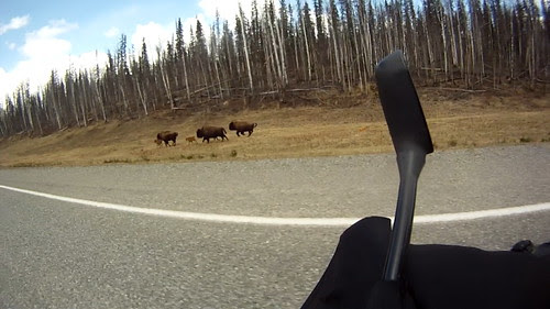 Everday for 7 Weeks - Day 11 - Fort Nelson to Watson Lake