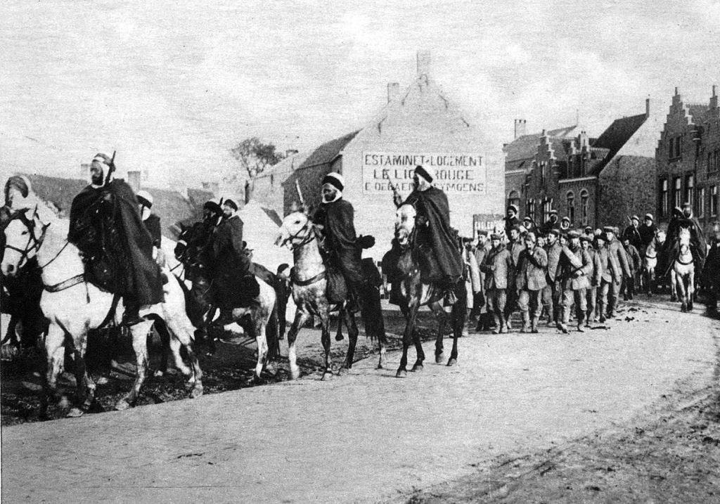 Os animais também lutaram na Primeira Guerra Mundial 37