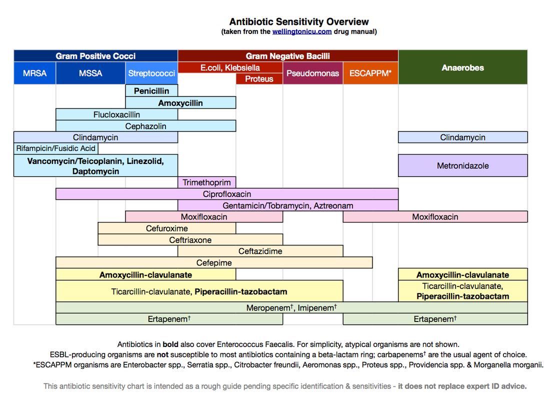 Antibiotic Coverage Chart Pdf - The Chart