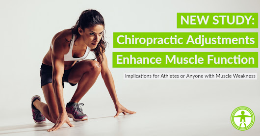 NEW STUDY: Chiropractic adjustments enhance muscle function