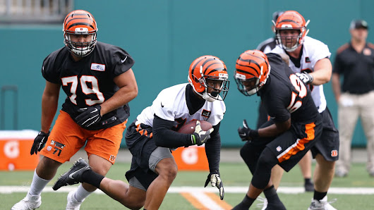 Better Bengals 2017 fantasy football option: John Ross or Joe Mixon?