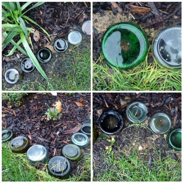 Recycled Glass Bottle Garden Border - Charlotte Hupfield ...