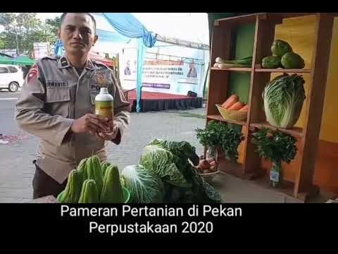 Promosi Sayur Grosir Makassar Melalui Pameran