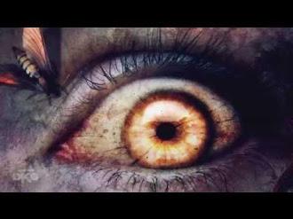 Las 7 experiencias de quienes vuelven de la muerte
