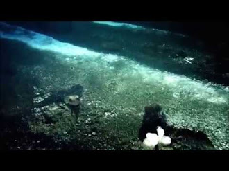 The Deepest Ocean In The World: Marianas Trench