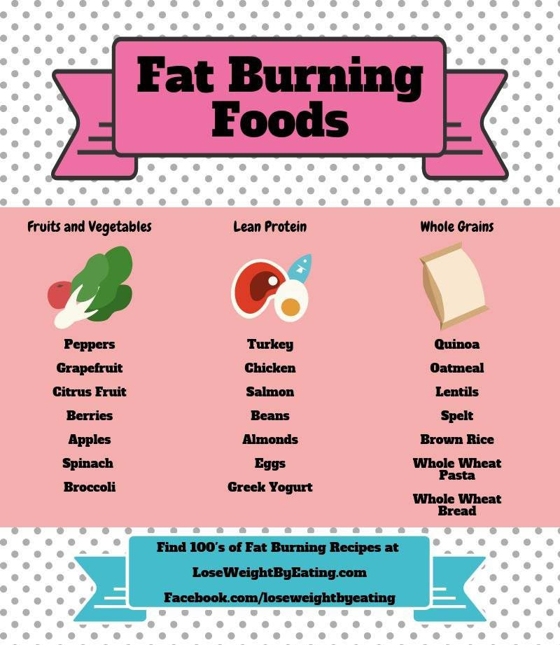 a beginner's guide to losing body fat!   - diet meal plan