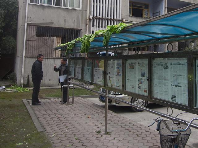Greens drying on the newspaper kiosk, Hongguang