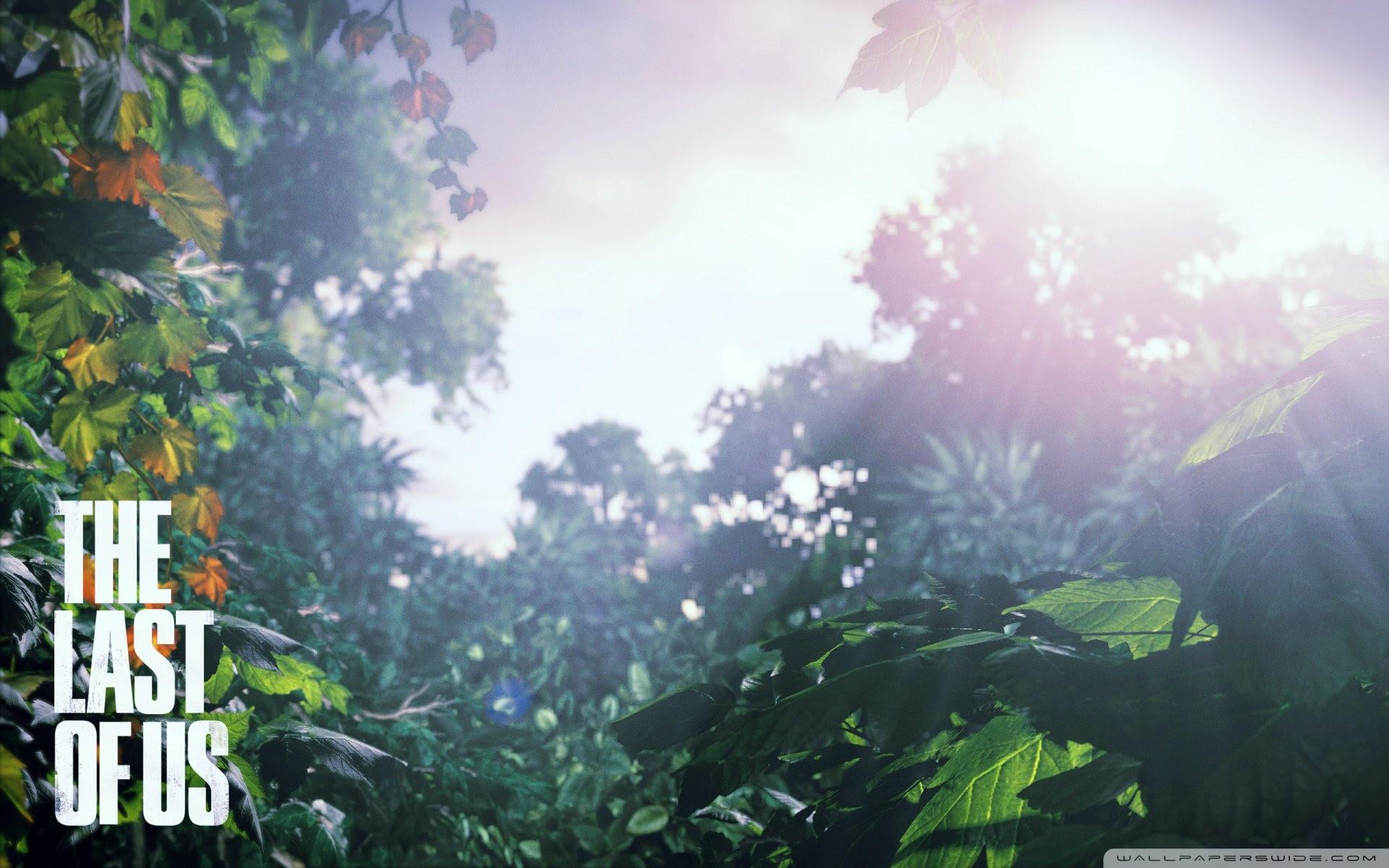The Last Of Us Scenery Ultra Hd Desktop Background Wallpaper For