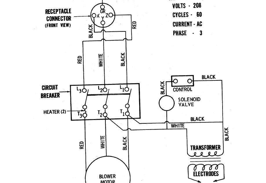 32 Rheem Water Heater Wiring Diagram