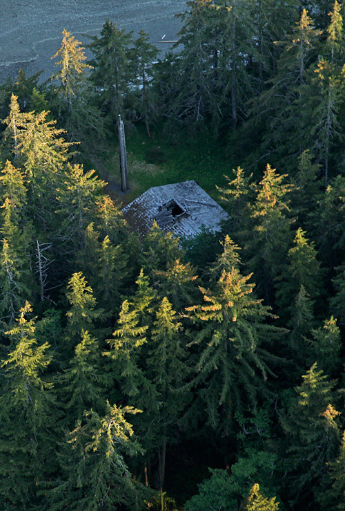 aerial shot of Naay I'waans and frontal totem pole (Chief Son-i-Hat Whale House), Kasaan, Alaska