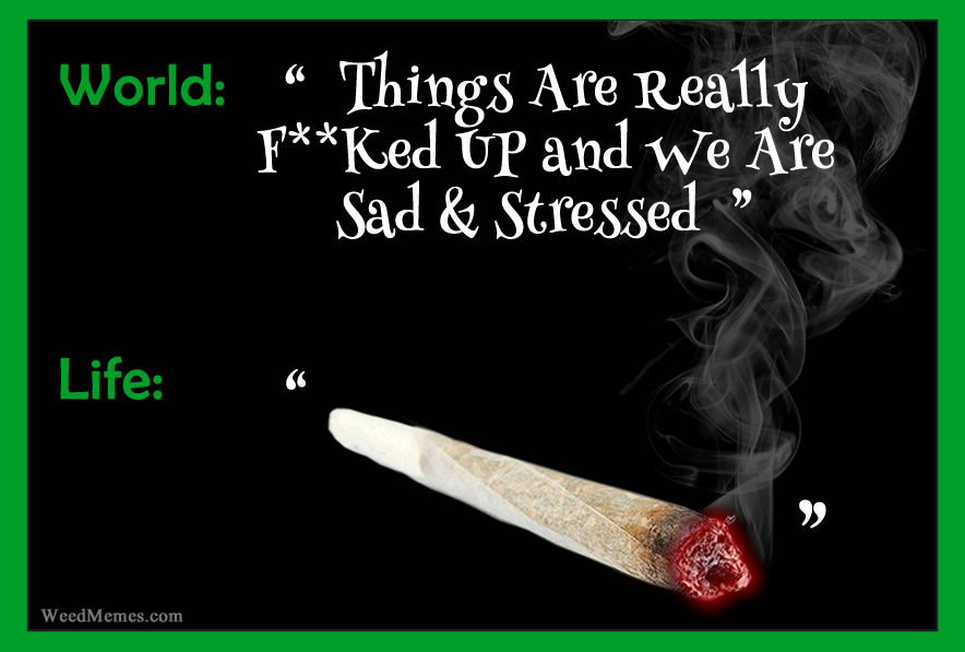 Life Says Smoke Weed When You Re Sad Marijuana Memes Weed Memes