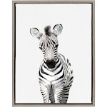 Kate and Laurel Sylvie Baby Zebra Animal Print Portrait Framed Canvas Wall Art by Amy Peterson, 18x24 Gray