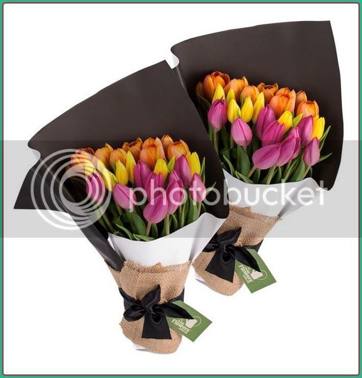 photo tulips.jpg