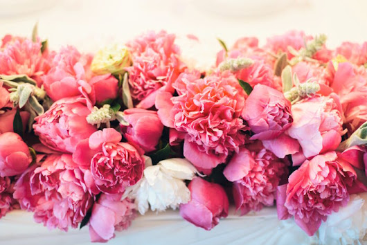 Peony Flower Meaning - Flower Meaning