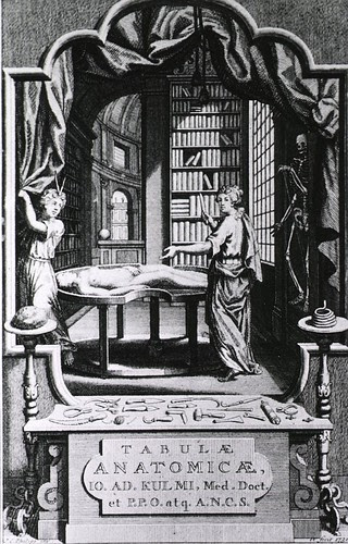 The human body and the library as sources of knowledge by JA Kulmus IN Tabulae anatomicae, 1732 (NLM)