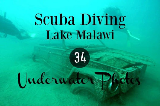 Scuba Diving Lake Malawi in 34 Underwater Photos |Divergent Travelers