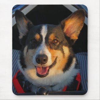 Thank You! Mouse Pads