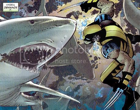 Wolverine and a shark