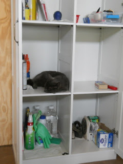 Mimi in Great Room Storage Cabinet