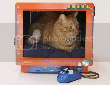 Computer Monitor Cat Bed