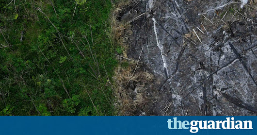 Humans have destroyed a tenth of Earth's wilderness in 25 years – study | Environment | The Guardian