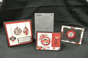 Not My Mama's Cards November Class Includes Embossing Folder
