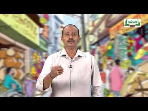 Class 10 வகுப்பு 10 தமிழ் 7 நாகரிகம் தொழில் வணிகம் கவிதைப் பேழை சிலப்பதிகாரம்  Kalvi TV