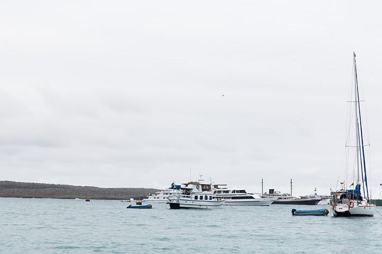 Ferry From Guayaquil To Santa Cruz Island
