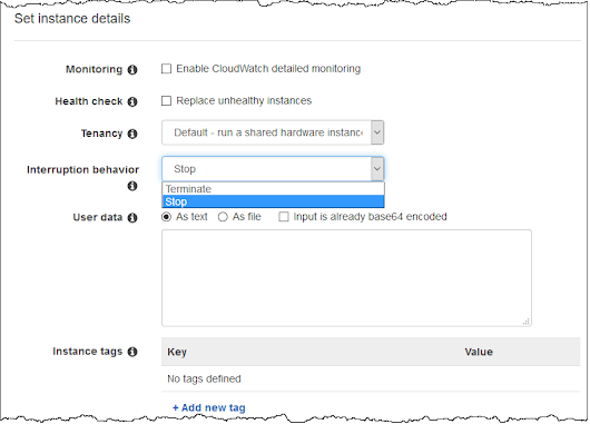 New – Stop & Resume Workloads on EC2 Spot Instances
