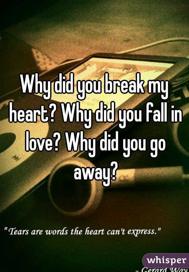Why Did You Break My Heart Why Did You Fall In Love Why Did You Go