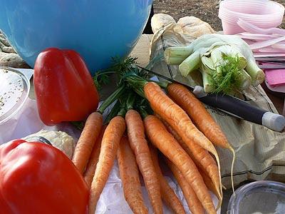 carottes.jpg