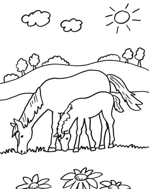 pferd malvorlage zum ausdrucken   aiquruguay