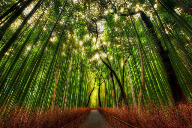Stunning Photographs That Will Leave You in Awe