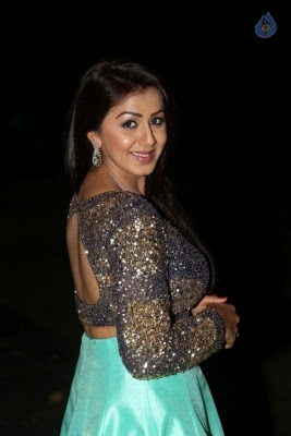 Nikki Galrani New Photos - 23 of 36