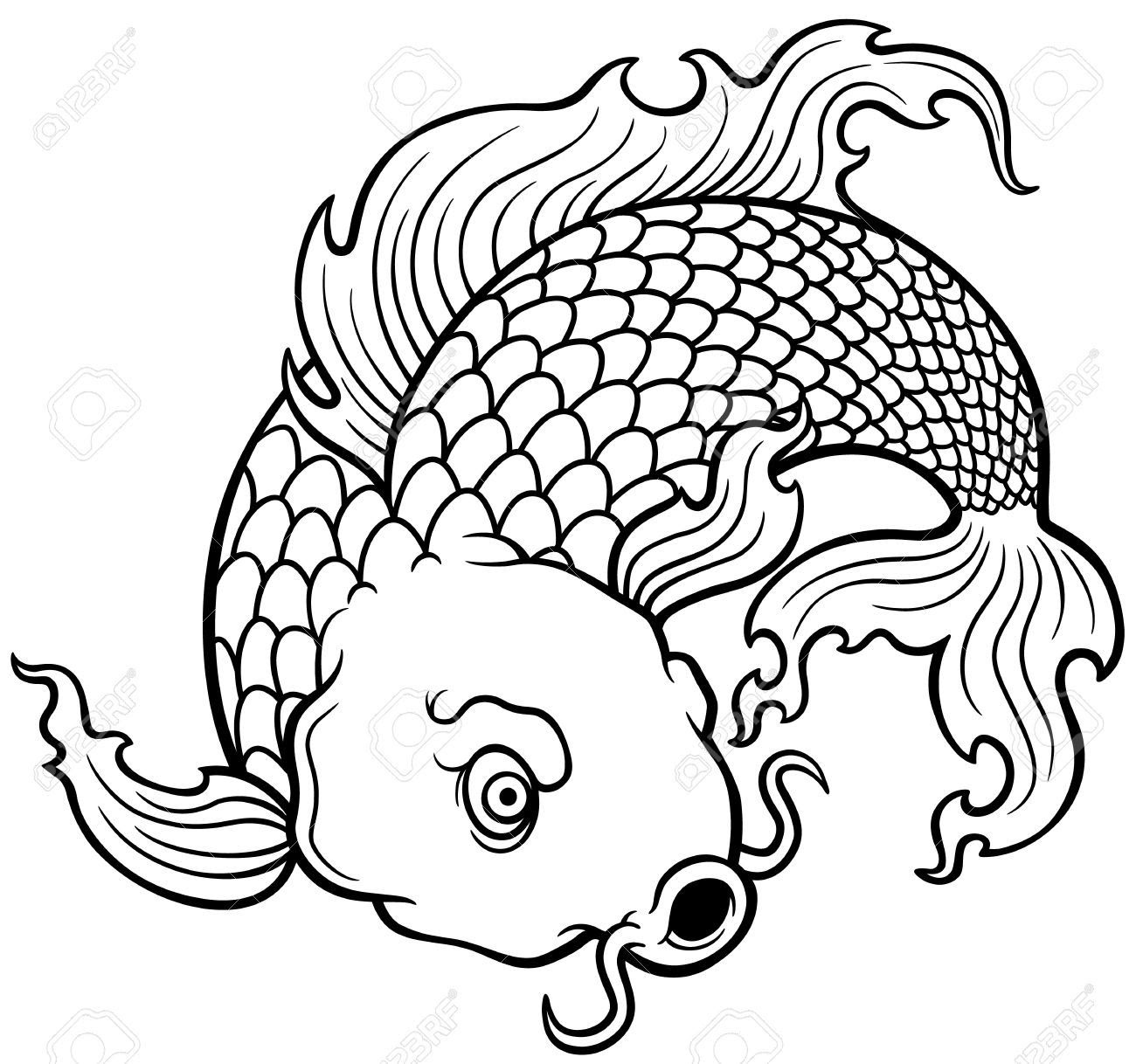 Japanese Koi Drawing   Free download on ClipArtMag