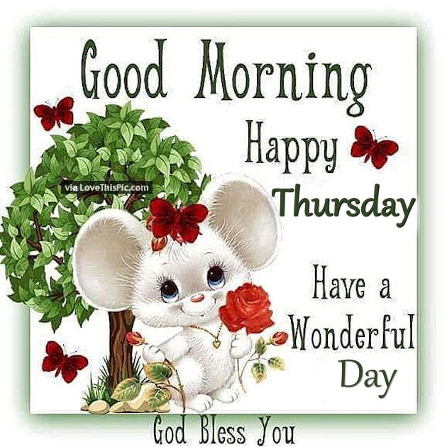 Good Morning Happy Thursday Have A Wonderful Day Pictures Photos