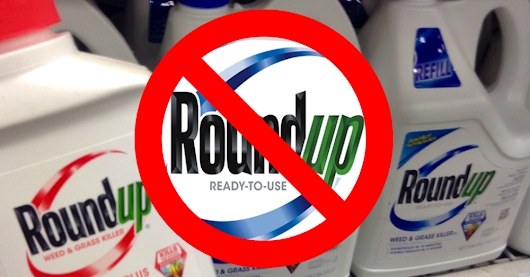 Toxic Truth: New Evidence for Banning Monsanto's Roundup Weedkiller