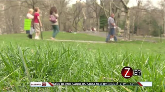 Seasonal Allergies Stick Around for Summer