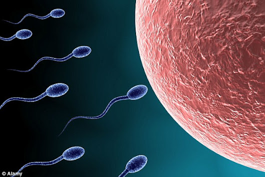 Falling Sperm Counts Could Lead To End Of Human Race - New Study Reveals