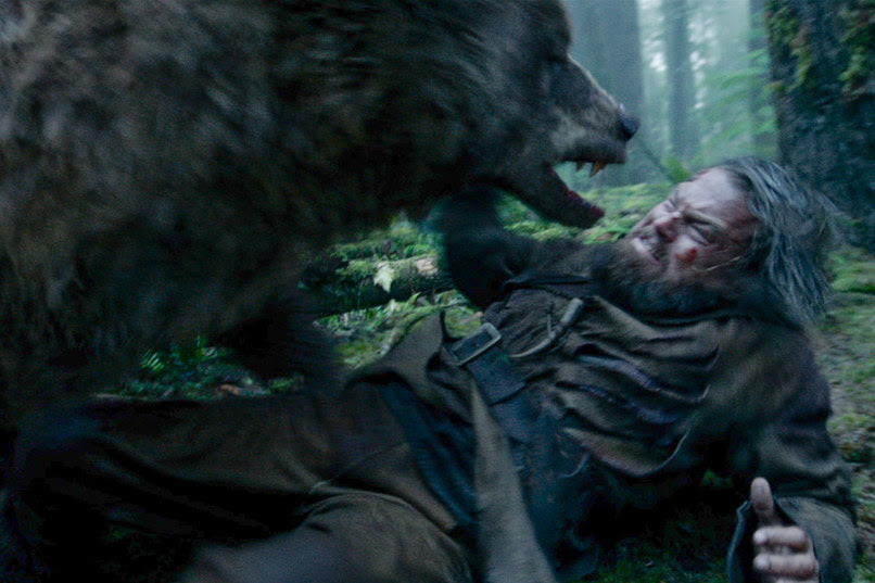 Bear orso oscar