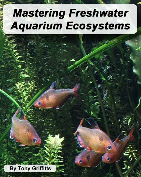 Aquaworld Aquarium - eBook - Mastering Freshwater Aquarium Ecosystems
